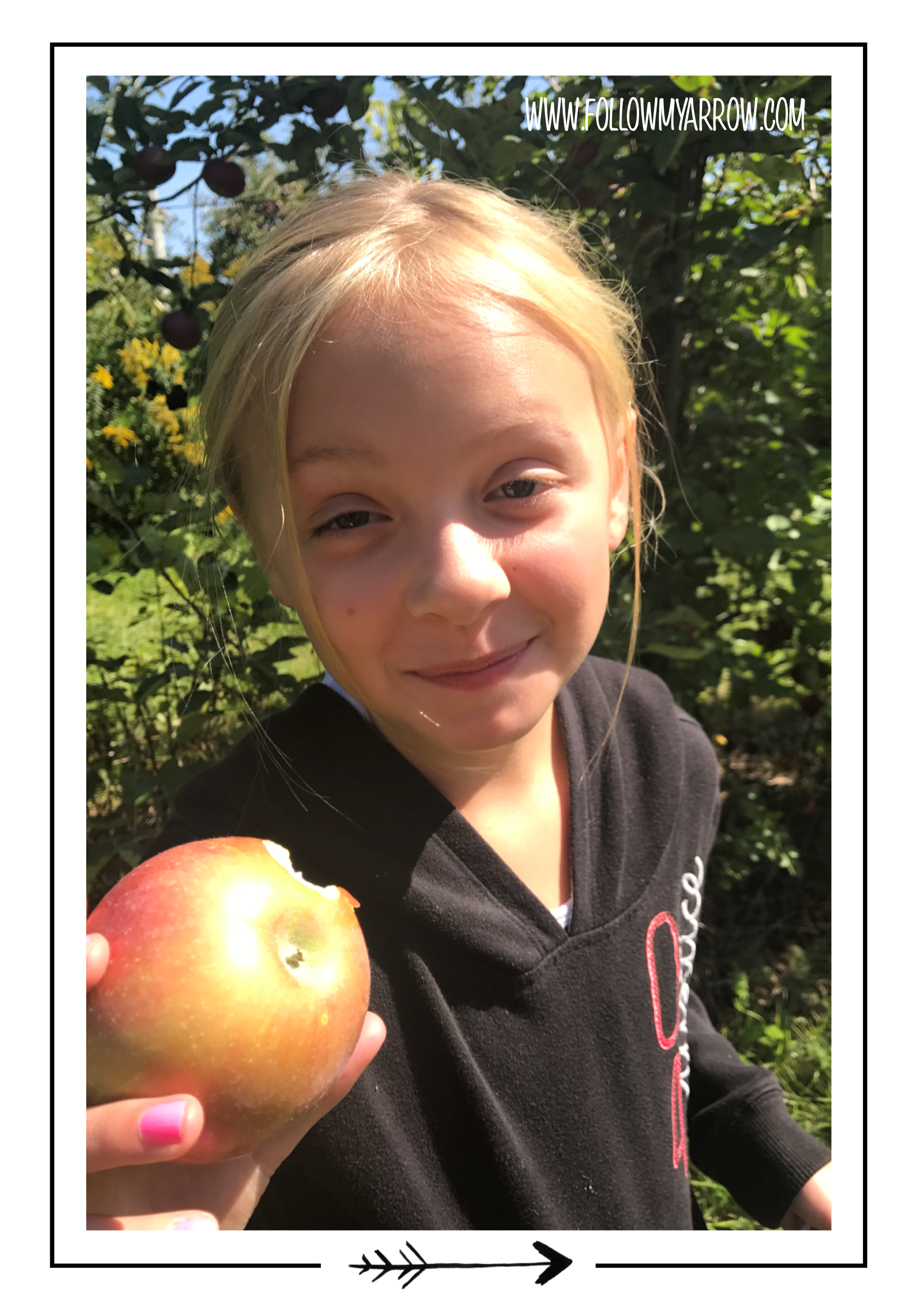 FMA-Apple-Hayden