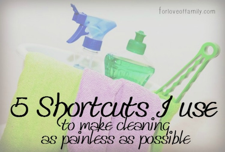 5 Cleaning Shortcuts