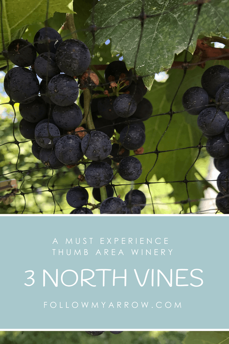 3 North Vines