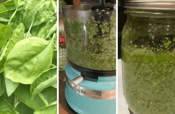 Basil Pesto - Double Duty