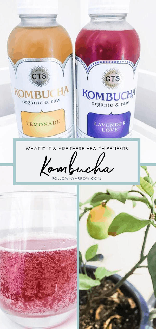 The Hype about Kombucha!